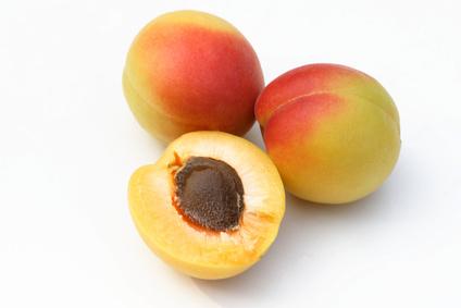 アプリコットカーネルオイル(杏仁油)の効能