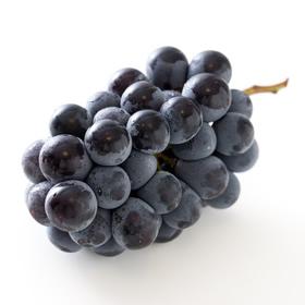グレープシードオイル(ブドウ種子油)の写真